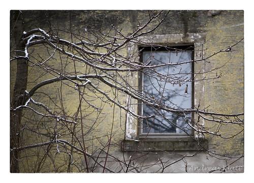 Fensteransicht