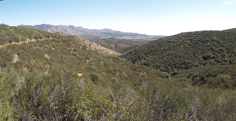 PCT San Felipe Hills - looking east toward Ranchita