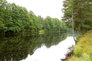 Pond_Kurzeme