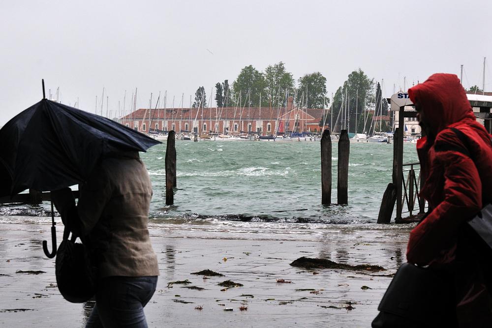 La Vita a Venezia (8917r)