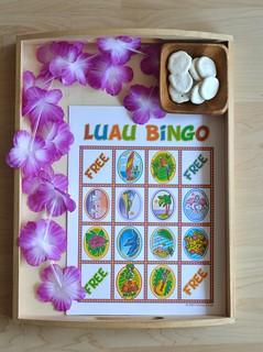 Luau Bingo Preschool