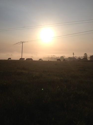 Sunrise in Ballinalee