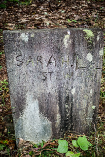 Lynch Family Cemetery-012