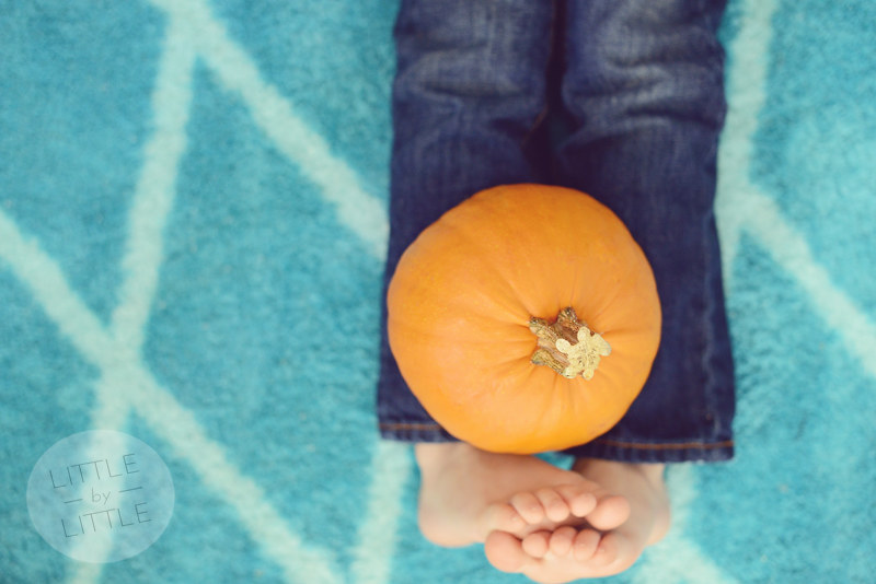 Jasper and the pumpkin 2013