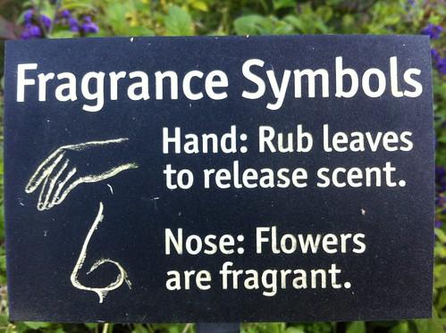 Fragrance Symbols