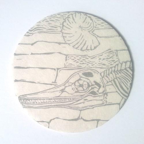 RoundFossilCliffs