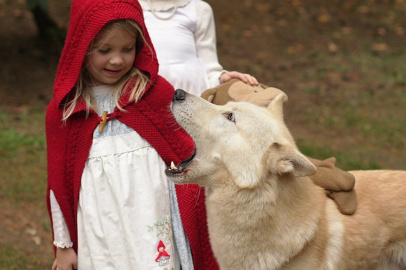 """My girls as Little Red Riding Hood, each with a """"wolf!"""" Handmade costume handed down. 10661796136_dde15c0428_c"""