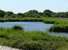 Landscape - West Sussex