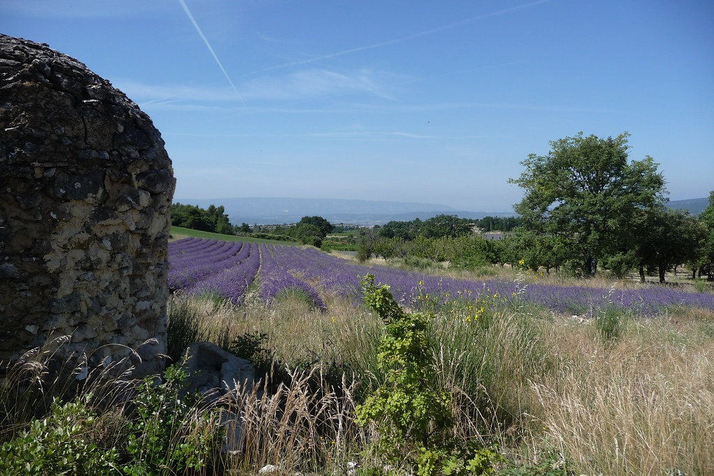 Luberon - tourisme - Bed and breakfast Li poulidetto