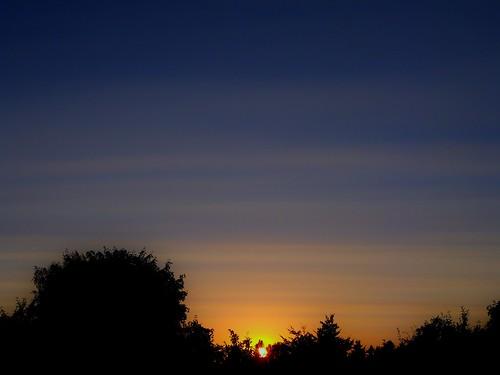 blue sunset orange beautiful silhouette summertime vancouverwa summertimesunset silhouetteinthesunset vancouverwasunset