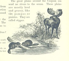 """British Library digitised image from page 55 of """"Primary Geography [With illustrations.]"""""""