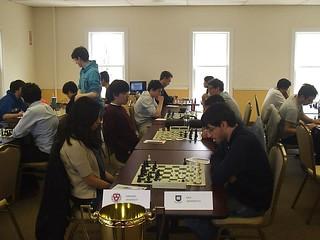 harvard chess
