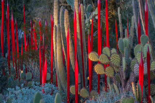 Red Reeds at Twilight