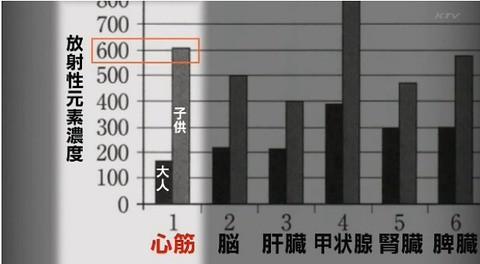 日本NTV專題報導「特命報導記者x2011」截圖