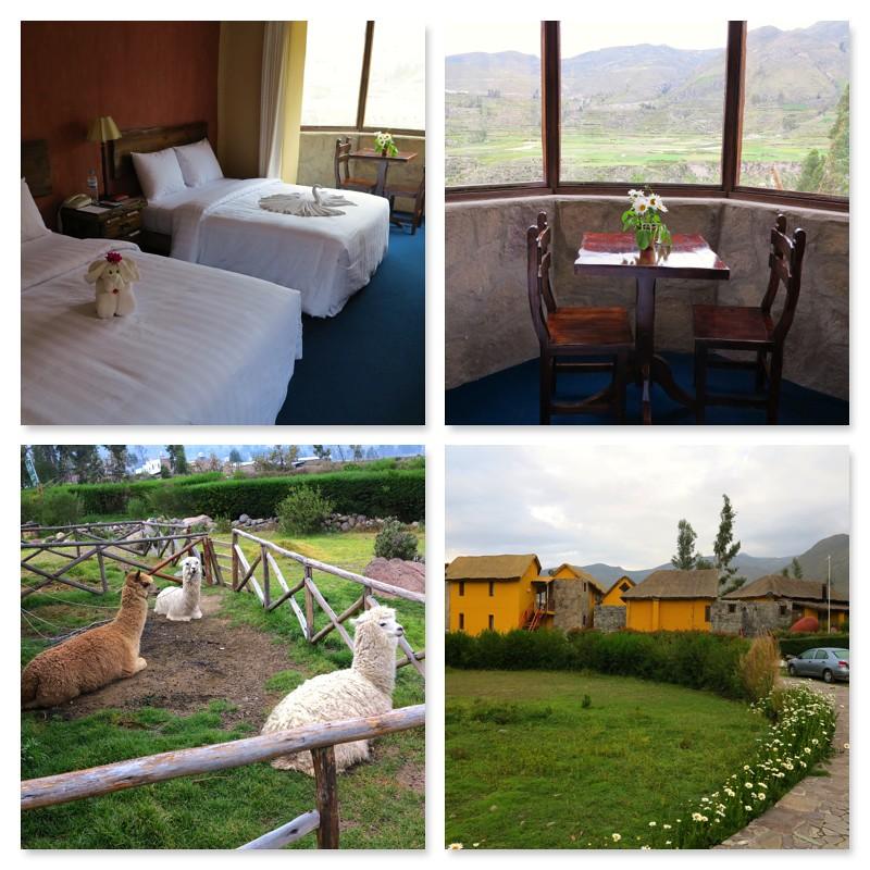Eco Inn Hotel Colca
