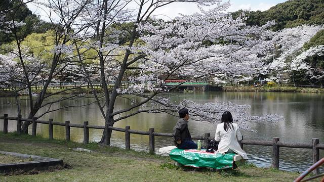 jyoukouji-park_03