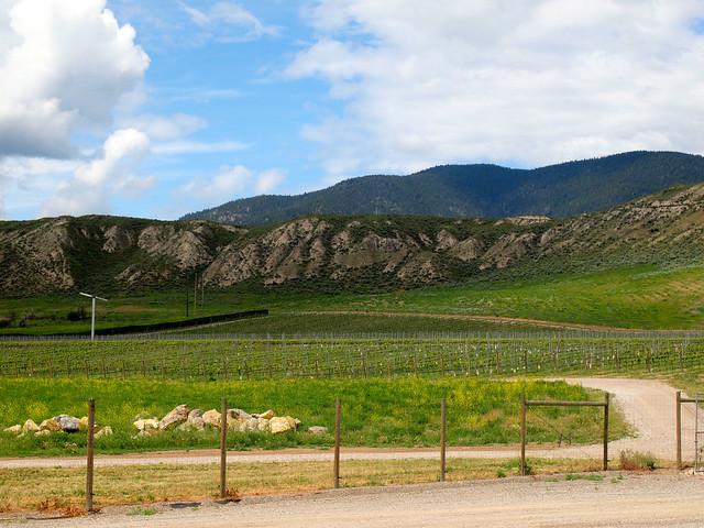 Harpers Trail Winery in Kamloops, British Columbia