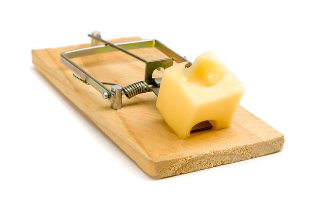 Бесплатный сыр от Microsoft