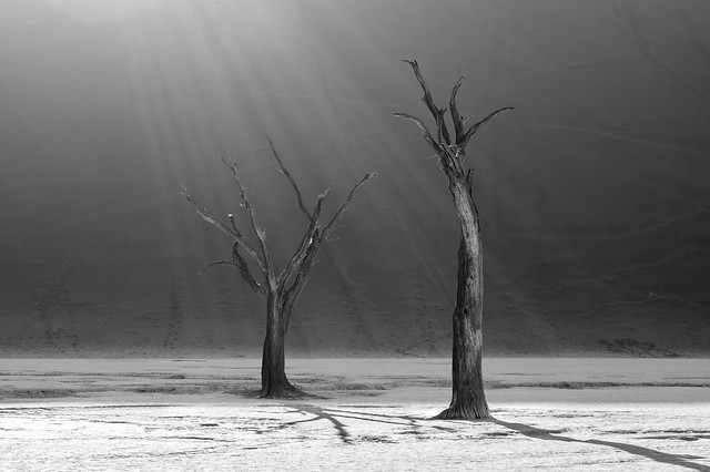 Sun rays over Deadvlei