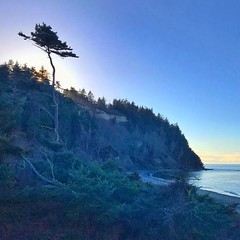 Home for the next 4 days while I attend and film the European Green Crab training here in Port Townsend. #adventureinspired #roamtheplanet #awesomeearth #earthfocus #wanderlust #pnwonderland #welivetoexplore #pnwspotlight #theelys #saintselection #porttow