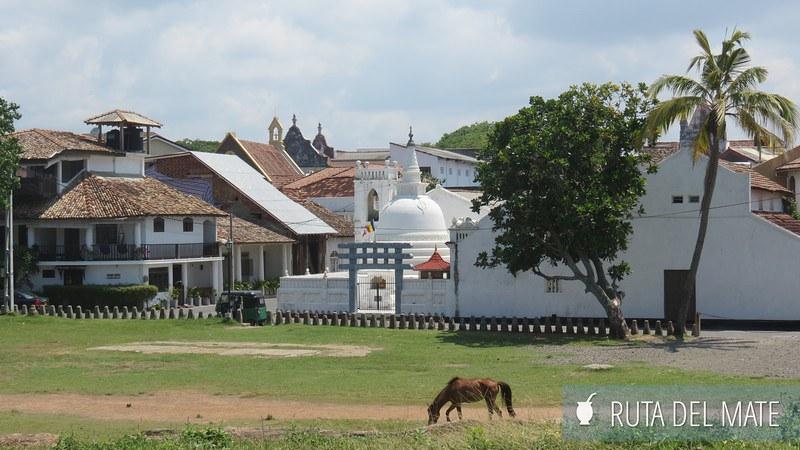 Playas Sri Lanka (15)