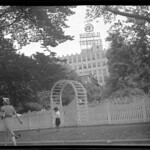 Victory Garden on Boston Common, Herald Building in background