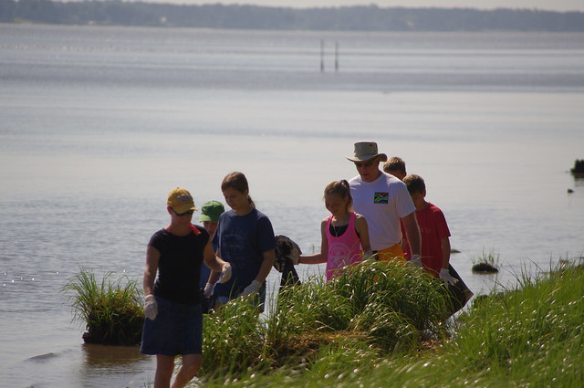 Volunteers of all ages pitch in on Clean the Bay Day 2013 at York River State Park