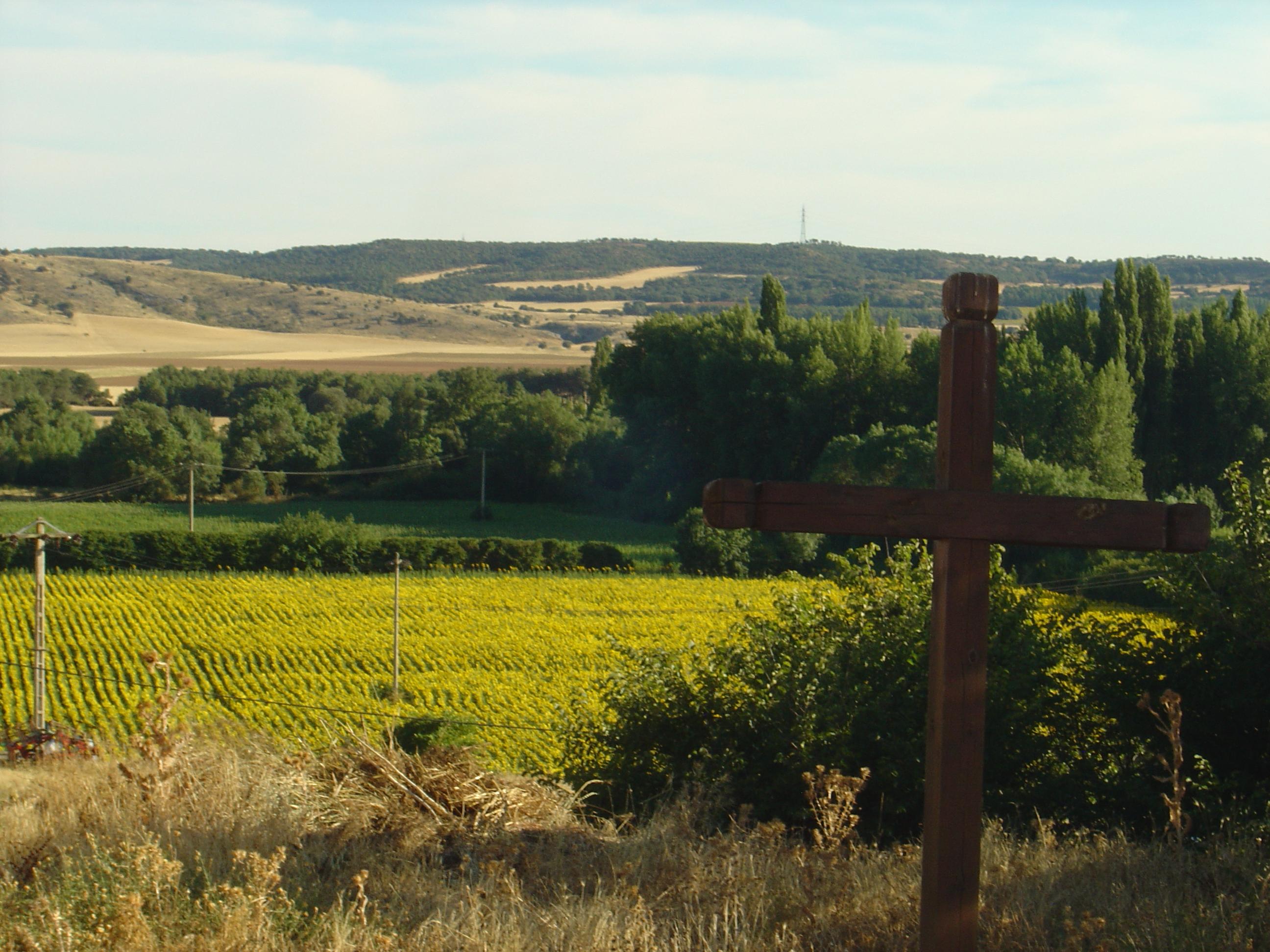Campos de Soria. Autor, Cornava