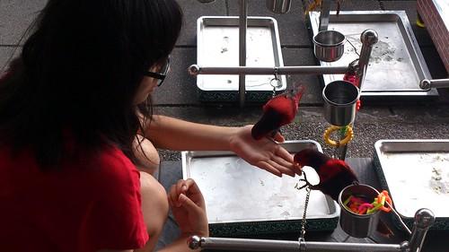 妹妹與折衷鸚鵡@鳥街