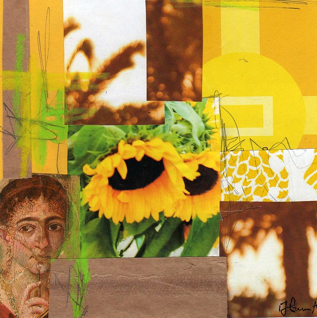 Collage: Sunshine Flowers
