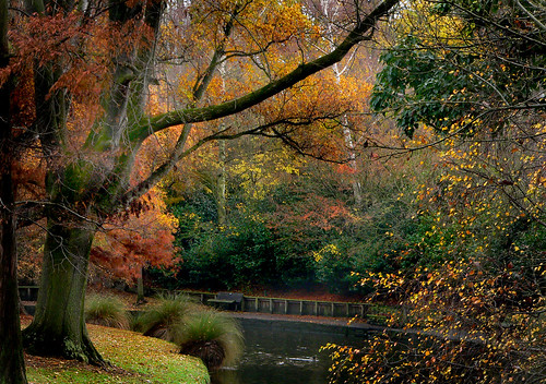 Hagley Park Christchurch NZ