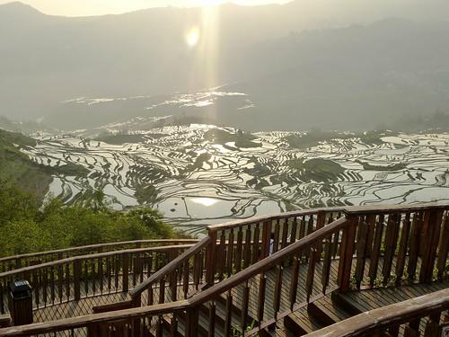 Yunnan13-Yuanyang 1-Duoyishu (110)