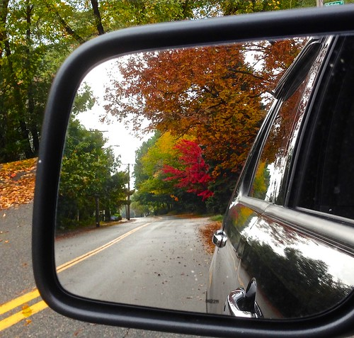 Reflection of Autumn by Beckwith-Zink (Diane)