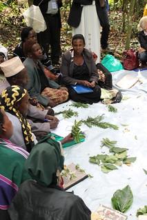 PROMETRA-Uganda傳統療法學校學生交流對藥草與疾病的經驗和知識