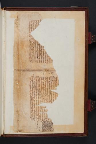 Manuscript fragment in Firmicus Maternus, Julius: Mathesis (De nativitatibus libri VIII)