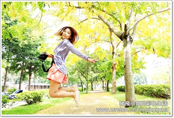 興大阿勃勒 (23)