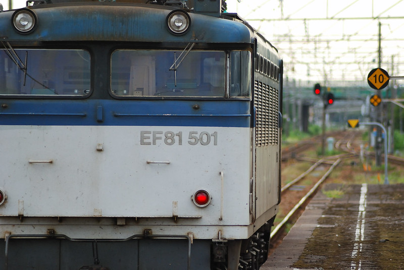 EF81-501