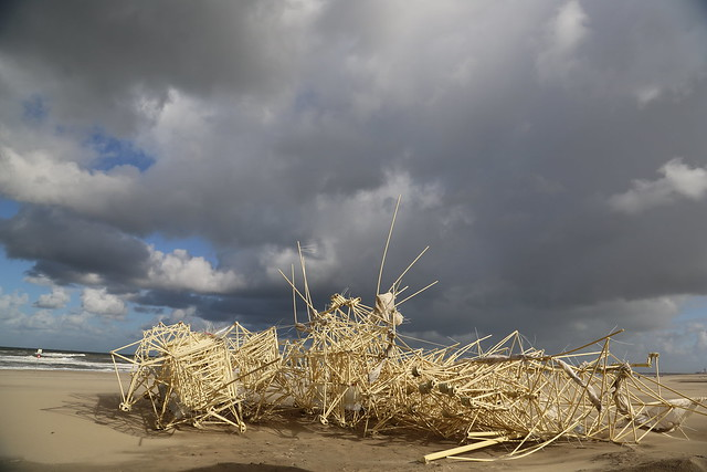 uros kirn 7 apodiacula at the silent beach 2013