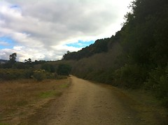 Garland Ranch/my hike today