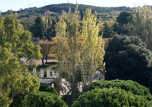 Parc de Montjuïc - tardor 2013