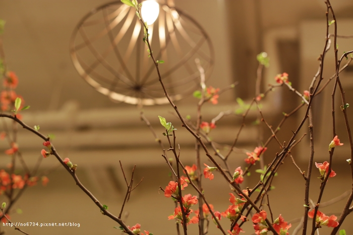 20140125_HokkaidoSki_1923 f