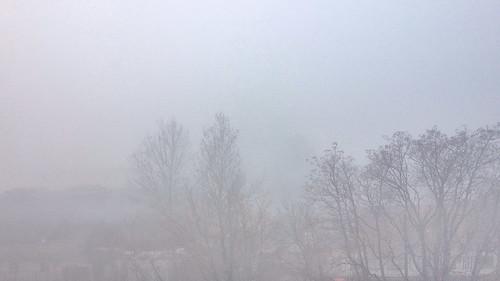 fog sunrise pwwinter