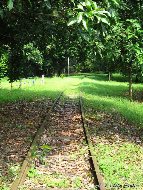 Old Jurong Line 04