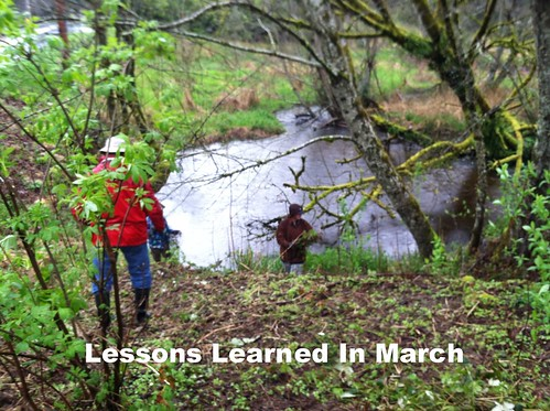 lessons learned in march