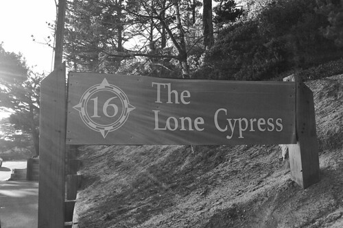 The Lone Cypress - Sign