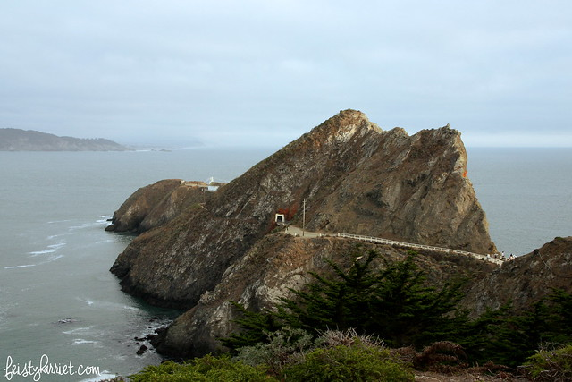 Point Bonita California_feistyharriet_July 2015 (8)