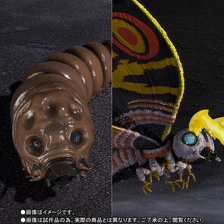 S.H.MonsterArts《哥吉拉vs摩斯拉》摩斯拉 モスラ (成蟲)&摩斯拉(幼蟲) Special Color Ver.