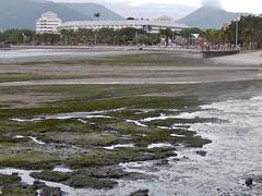 Low Tide/Mud Flats