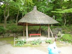 Dewott in Korakuen, Tokyo 5 (Korakuen Garden)