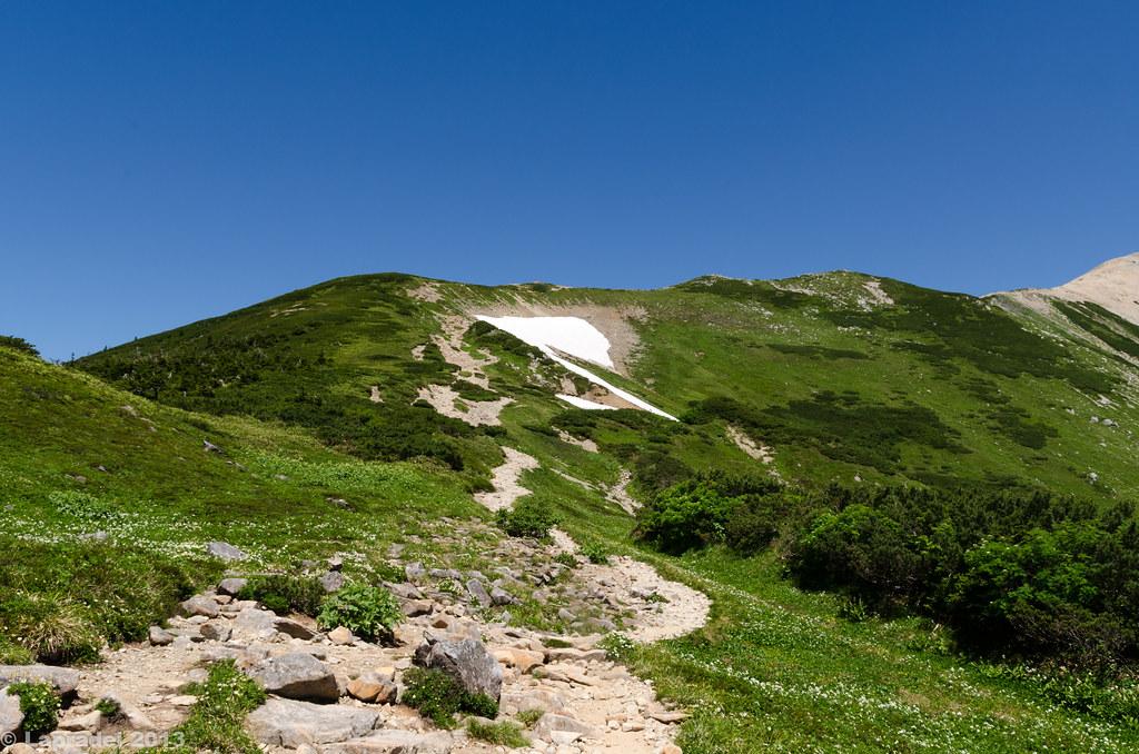 20130812 薬師岳登山道